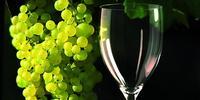 Kolekcja szkła VINOTECA. Kieliszki i karafki, które mówią o winie